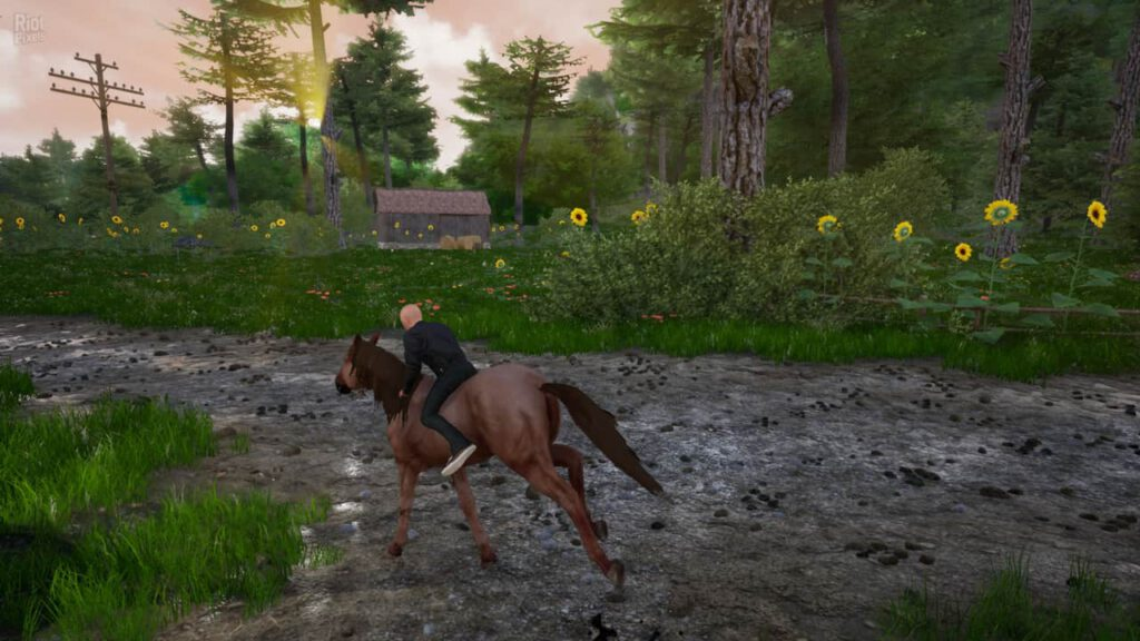 Horse Riding Deluxe 2 Download